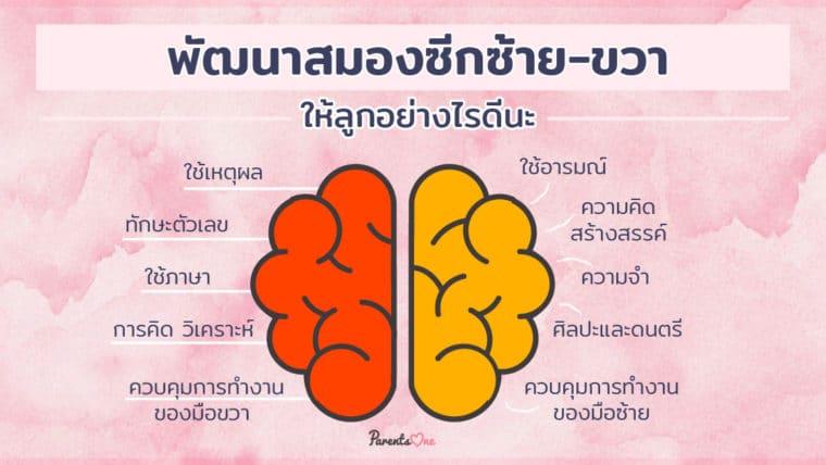 พัฒนาสมองซีกซ้าย-ขวาให้ลูกอย่างไรดีนะ