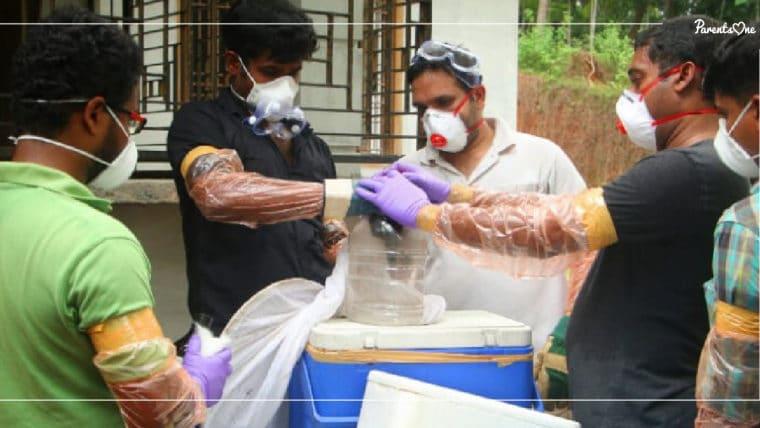 """NEWS: สธ. ประกาศ """"ไวรัสนิปาห์"""" เป็นโรคติดต่ออันตราย! เฝ้าระวังจากอินเดียระบาดเข้าไทย"""