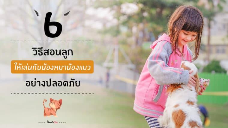 6 วิธีสอนลูกให้เล่นกับน้องหมาน้องแมว อย่างปลอดภัย