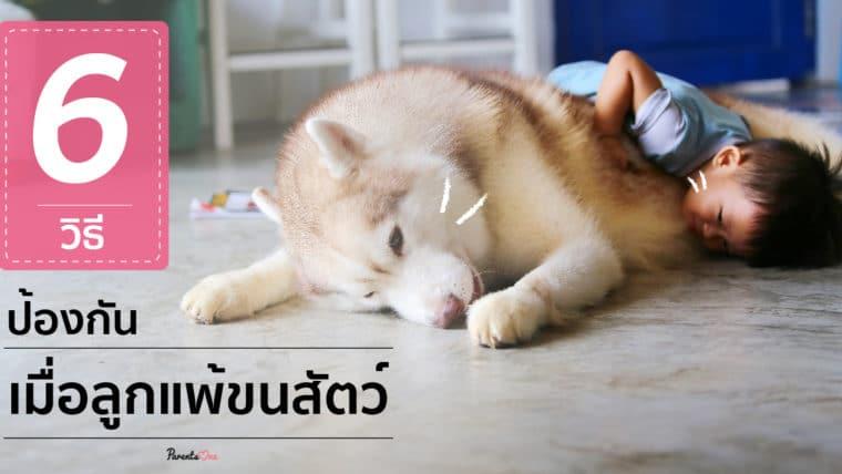 6 วิธีป้องกัน เมื่อลูกแพ้ขนสัตว์