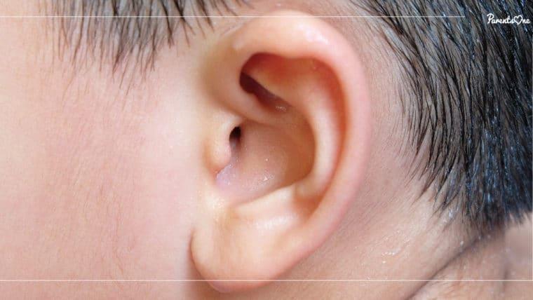 NEWS: เตือนพ่อแม่ แค่ลูกเป็นหวัด ระวังเป็นโรคหูน้ำหนวกในเด็ก