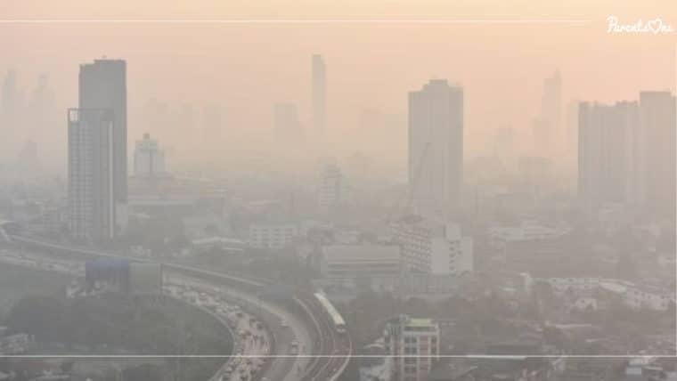 NEWS : ฝุ่น PM 2.5 ส่งผลต่อสมอง อาจทำให้เด็ก 'โง่' ลง !