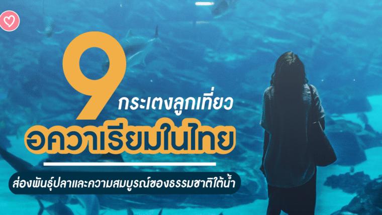 กระเตงลูกเที่ยว 9 อควาเรียมในไทย ส่องพันธุ์ปลาและความสมบูรณ์ของธรรมชาติใต้น้ำ