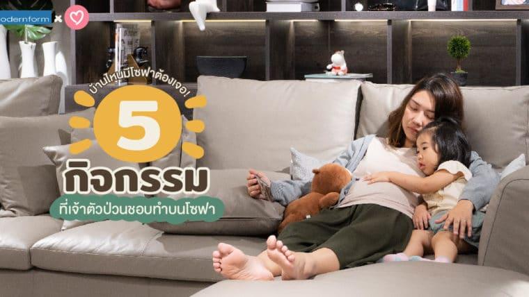 บ้านไหนมีโซฟาต้องเจอ! 5 กิจกรรมที่เจ้าตัวป่วนชอบทำบนโซฟา