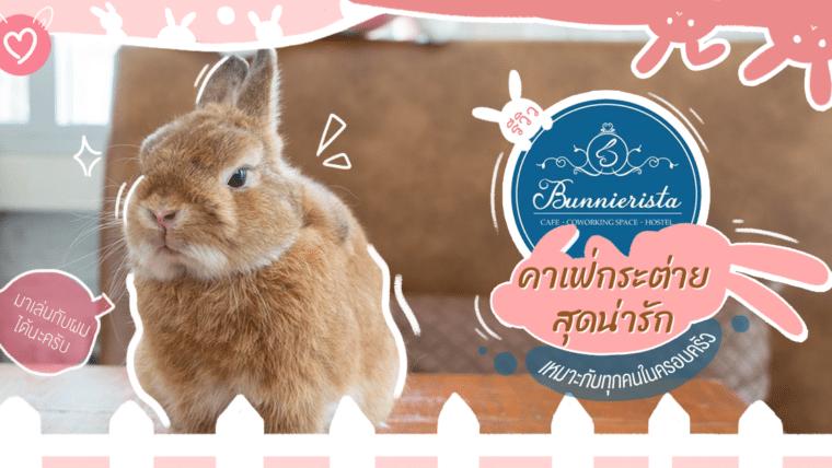 รีวิว Bunnierista คาเฟ่กระต่ายสุดน่ารักเหมาะกับทุกคนในครอบครัว
