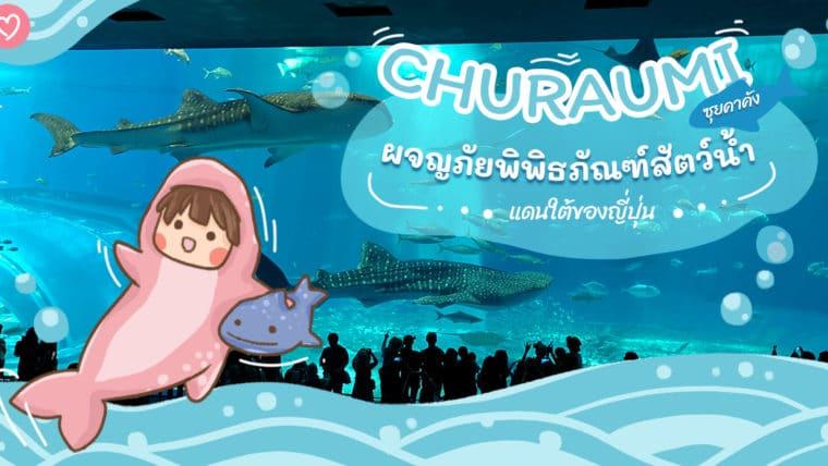 CHURAUMI ซุยคาคัง ผจญภัยพิพิธภัณฑ์สัตว์น้ำแดนใต้ของญี่ปุ่น