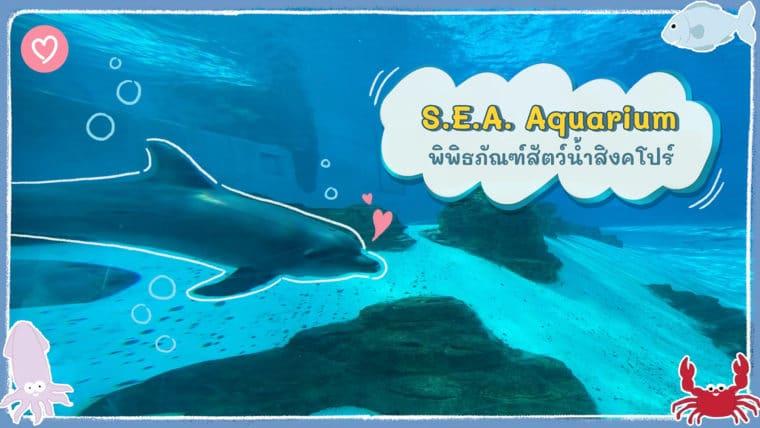 พาเที่ยว S.E.A Aquarium พิพิธภัณฑ์สัตว์น้ำสิงคโปร์