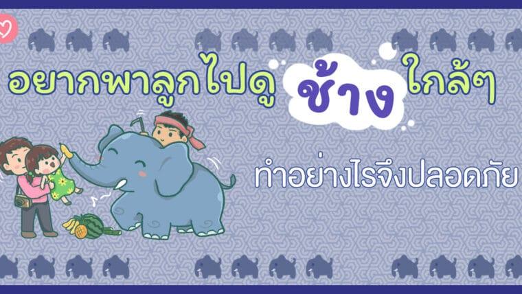 อยากพาลูกไปดูช้างใกล้ๆ ทำอย่างไรจึงปลอดภัย