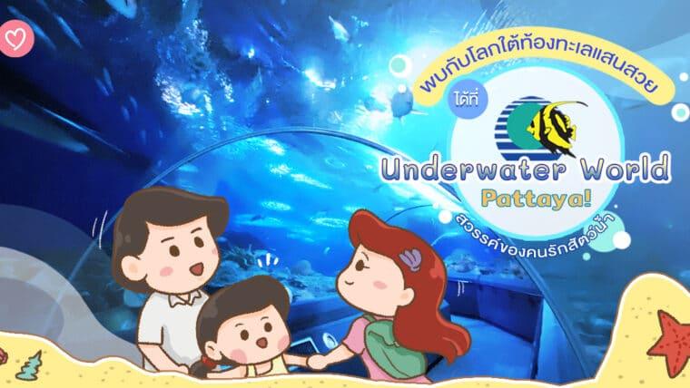 พบกับโลกใต้ท้องทะเลแสนสวยได้ที่ Underwater World Pattaya ! สวรรค์ของคนรักสัตว์น้ำ