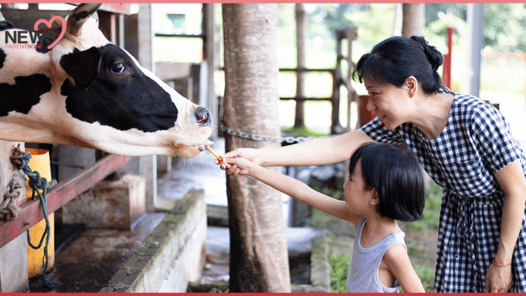 NEWS : ฉลองวันเด็กแห่งชาติปี 64 เปิดให้เด็กๆ เที่ยวสวนสัตว์ฟรีทั่วไทย