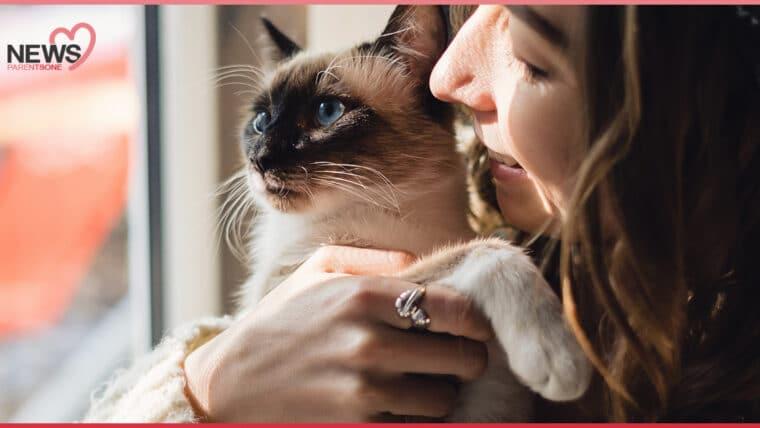 """NEWS : แพทย์เตือน คุณแม่ตั้งครรภ์ห้าม """"เก็บขี้แมว"""" อาจเสี่ยงโรคทอกโซพลาสโมซิส"""